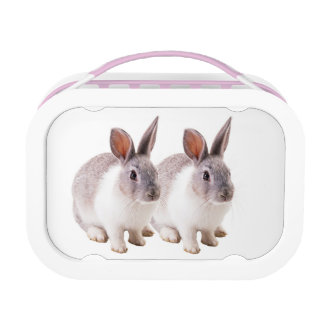 Pet image for Yubo-Lunch-box-Pink Lunchboxes