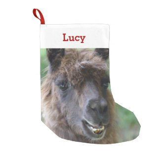 Pet Llama Lover Owner Photo & Name Personalized Small Christmas Stocking