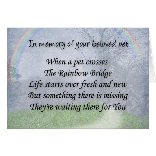 Pet loss sympathy card - pet waits for