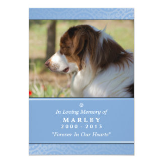 Pet Memorial 5x7 Light Blue Rainbow Bridge (MALE) 13 Cm X 18 Cm Invitation Card
