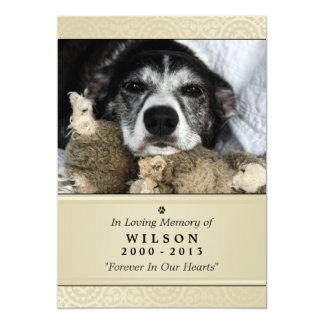 "Pet Memorial Card 5""x7"" Creme Modern - Male Pet 13 Cm X 18 Cm Invitation Card"