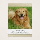 Pet Memorial Card Creme - Don't Grieve Poem