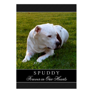 Pet Memorial Card Modern Black - Contented Poem Pack Of Chubby Business Cards
