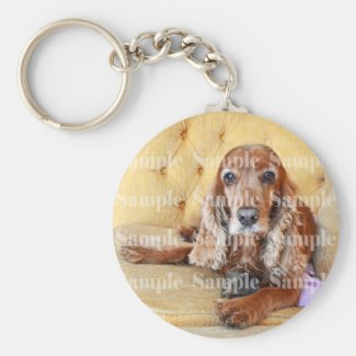 Pet memorial memory / PERSONALIZE photo