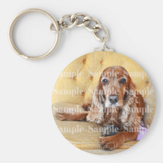 Pet memorial memory / PERSONALIZE photo Key Ring