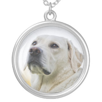 Pet Memorial Pendant Necklace