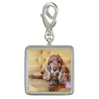 Pet memorial photo PERSONALIZE