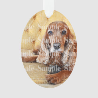 Pet memorial photo PERSONALIZE Ornament