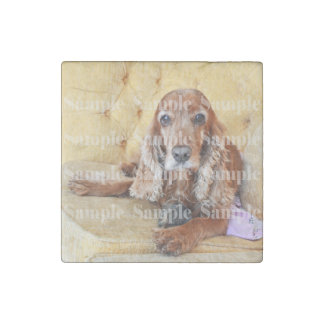 Pet memorial photo PERSONALIZE Stone Magnet