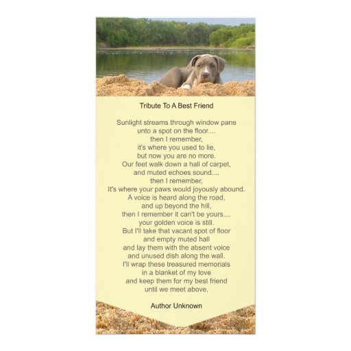 Pet Memorial Poem Photo Card Picture Card