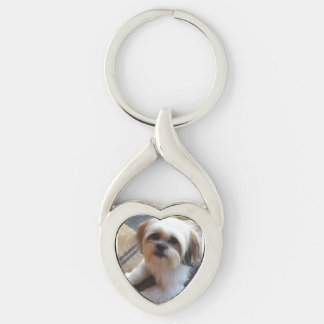 Pet Memory Key Chain Silver-Colored Twisted Heart Key Ring