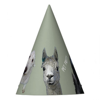 Pet Party Customizable Hat