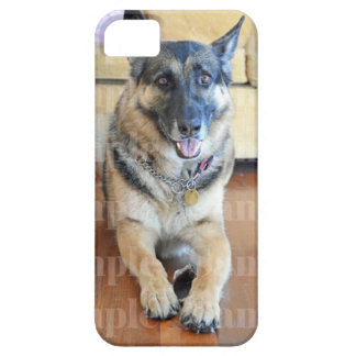Pet photo dogs cats PERSONALIZE Case For The iPhone 5