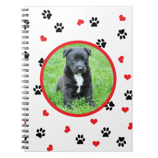 pet photo with cute sweet paw and heart pattern notebook