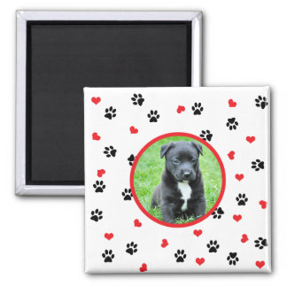 pet photo with paws and hearts pattern magnet