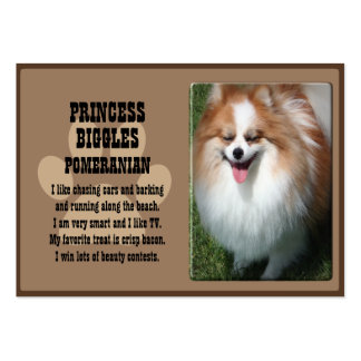 Pet Profile Card Pack Of Chubby Business Cards