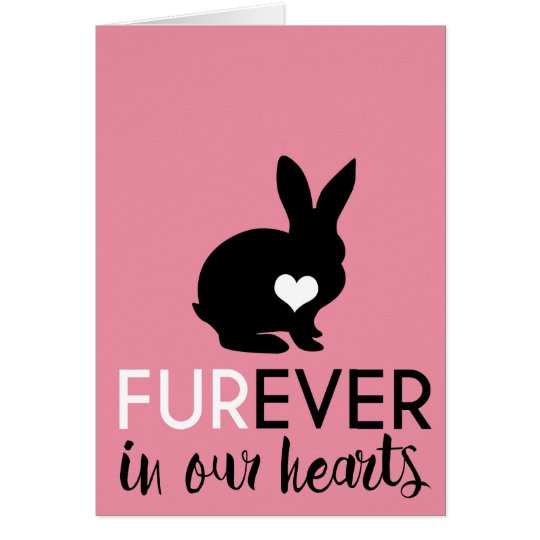 Pet Rabbit Condolence | Furever In Our Hearts