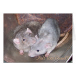 Pet Rat Anniversary Card