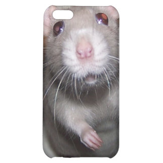 Pet Rat Baby Izzy iPhone Case iPhone 5C Covers