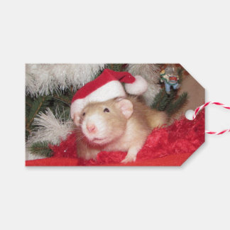Pet Rat Birch Gift Tag