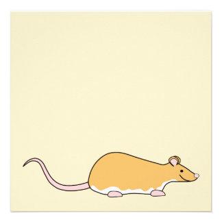 Pet Rat. Cinnamon Berkshire, White Belly. Invitations