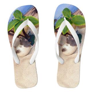 Pet Rat Mr. Bean  at the Beach Flip Flops