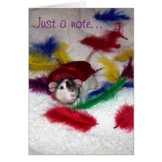 Pet Rat Oreo Note Card