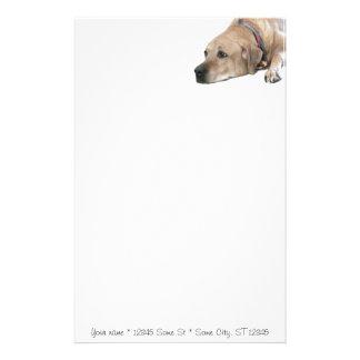 Pet Rhodesian Ridgeback Dog Picture Personalized Stationery