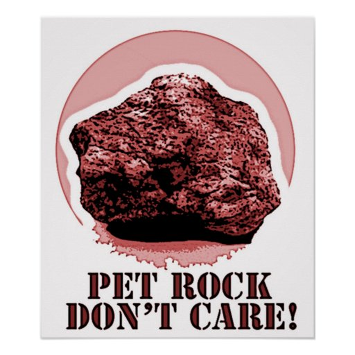 PET ROCK DON'T CARE! Funny Poster