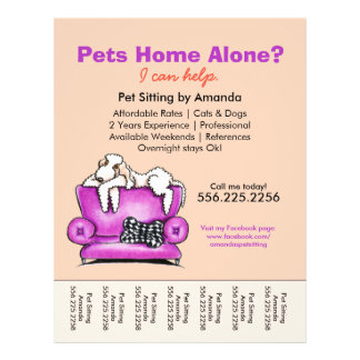 Pet Sitter Ad White Dog Mod Couch Tear Sheet 21.5 Cm X 28 Cm Flyer
