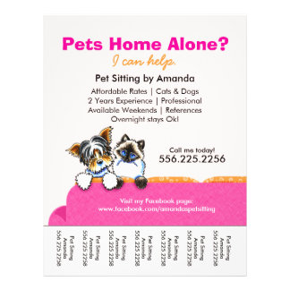 Pet Sitter Ad Yorkie Cat Couch Pink Tear Sheet 21.5 Cm X 28 Cm Flyer