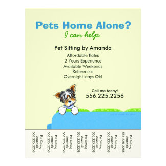 Pet Sitter Ad Yorkie Couch Green Tear Sheet 21.5 Cm X 28 Cm Flyer