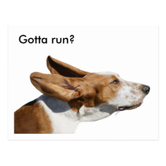 Pet Sitter Basset Hound ears flapping postcard