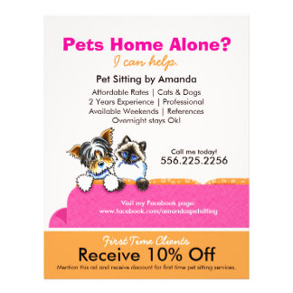 Pet Sitter Coupon Ad Yorkie Cat Couch Pink 21.5 Cm X 28 Cm Flyer