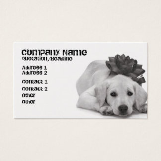 Pet Supply/Groomer/Etc.