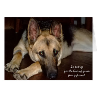 Pet sympathy card German Shepherd Rescue