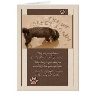 Pet Sympathy Loss of a Dog Deluxe Card