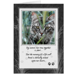Pet Sympathy Loss of Cat Gray Tabby Card