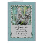 Pet Sympathy Loss of Cat | Tabby in the Grass