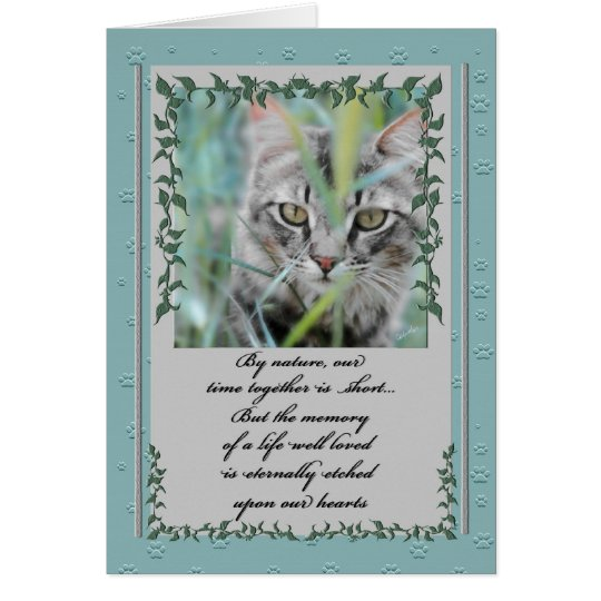Pet Sympathy Loss of Cat | Tabby in