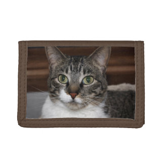 Pet Tabby Cat Face Photo Tri-fold Wallet