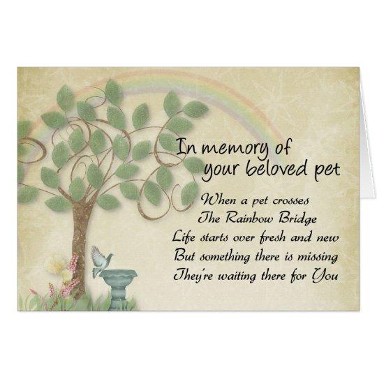 Pet waiting at Rainbow Bridge pet loss, memorial