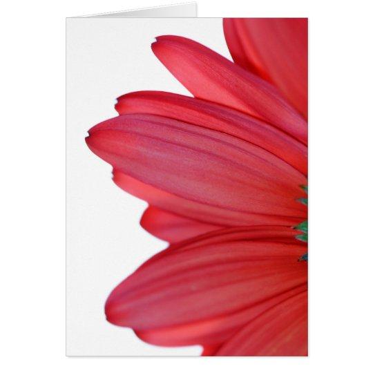 Petals from heaven card