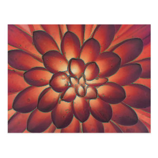 Petals Modern Abstract Floral Fine Art Postcard