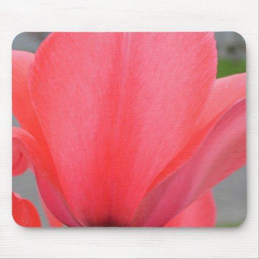 Petals of a Tulip Mousepad