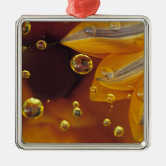 Petals on Mylar reflective surface with drops. Christmas Ornament