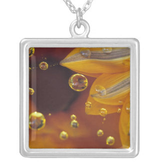 Petals on Mylar reflective surface with drops. Silver Plated Necklace