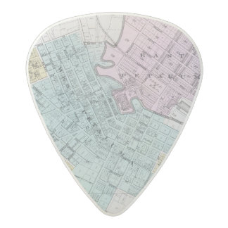 Petaluma, California 2 Acetal Guitar Pick