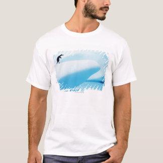 Petermann Island, Antarctica T-Shirt