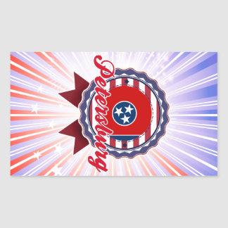 Petersburg TN Rectangular Stickers